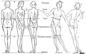 La construction de corp de femme sur les cours de modele vivant