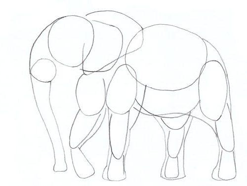 etape 4 comment dessiner elephant cours de dessin Artacademie paris