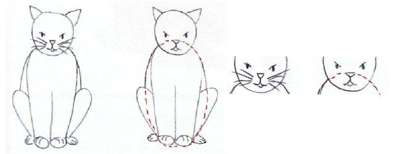 Comment dessiner le chat sur les stage de dessin adolescent