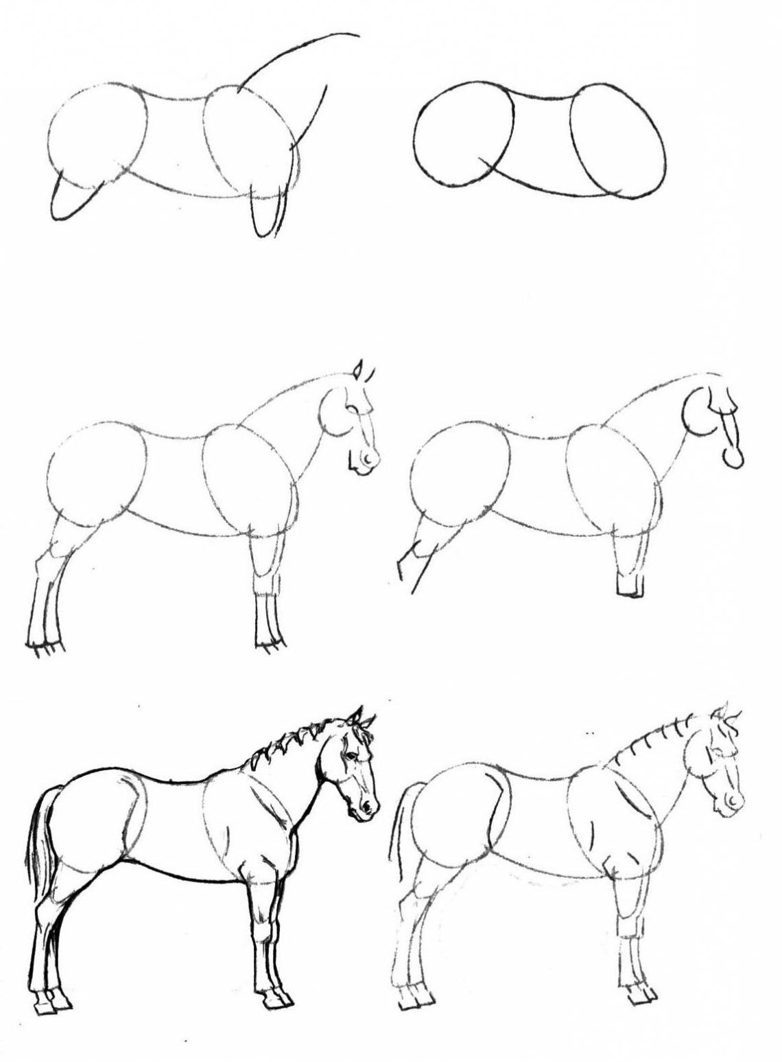 Comment dessiner un cheval artacad mie - Cheval a dessiner facile ...